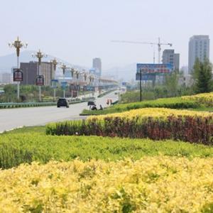 亚虎官方app官方网站市的春夏秋冬四季分明